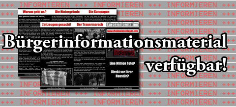 Buergerinformation_2011